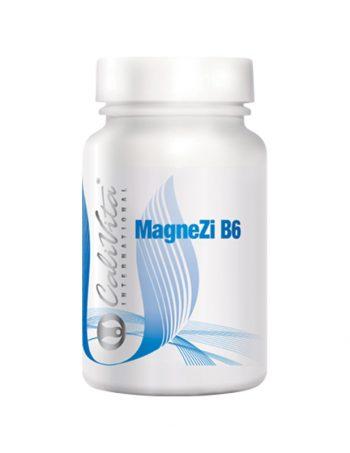 MagneZi-B6-(90-tableta)