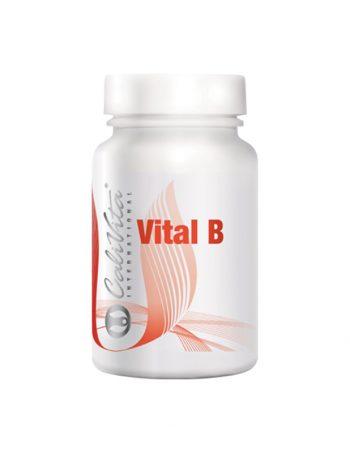 Vital B Multivitamin prema krvnim grupama (B)